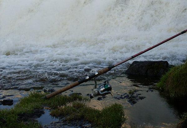 фидерная ловля для начинающих видео уроки