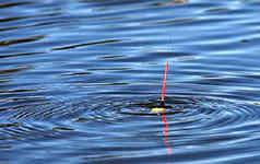 поплавочная удочка