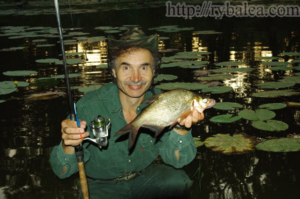 Сколько стоят черви для рыбалки