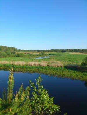 река в Тверской области