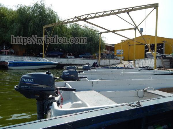 лодки на старте соревнования