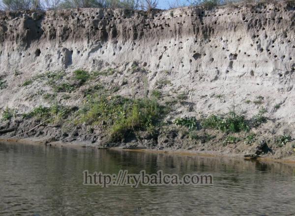Красоты природы на реке Ворскла