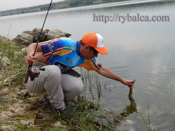 Рыбалка на Софиевском водохранилище