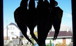 Таранка. Сушеная рыба