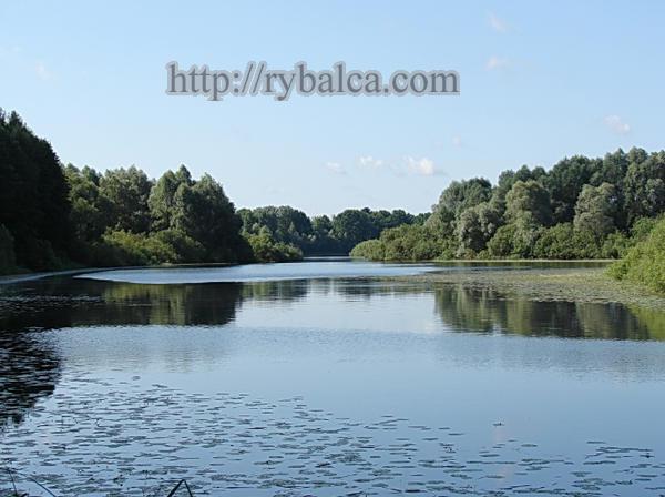 река в Белоруссии