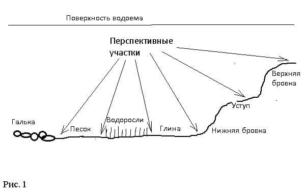 перспективные (уловистые) места