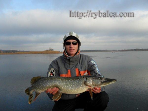 Трофеи зимней рыбалки