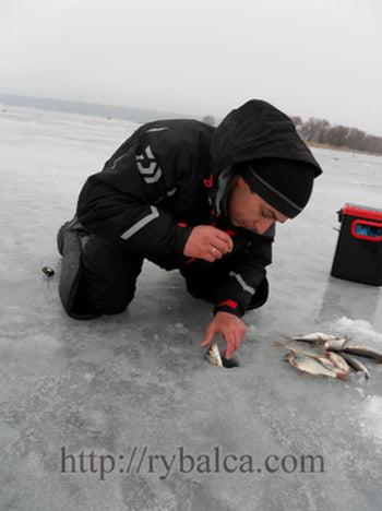 Алексей Лисица ловля на мормышку