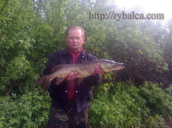 рыбалка на быстром течении
