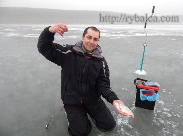 Алексей Лисица ловля плотвы зимой
