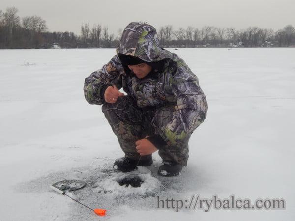 shhuka_zherlica_zima