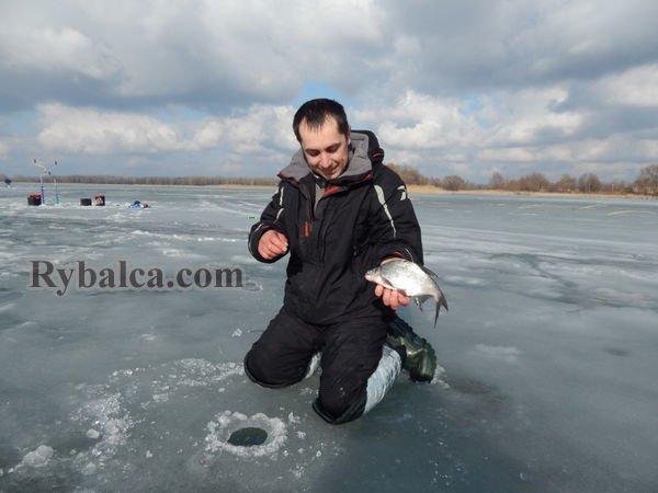 Алексей Лисица Ловля леща зимой