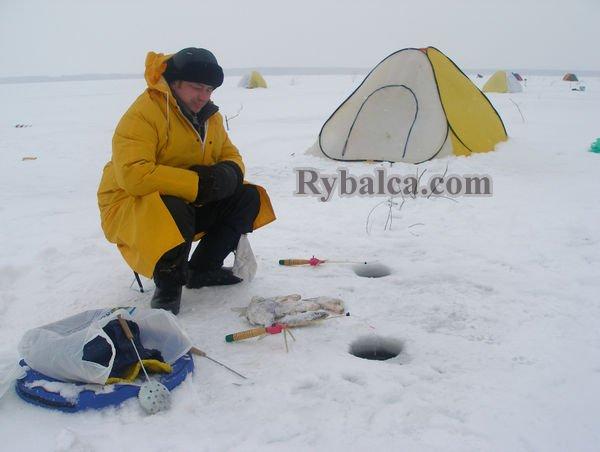 зимняя рыбалка прикормка видео